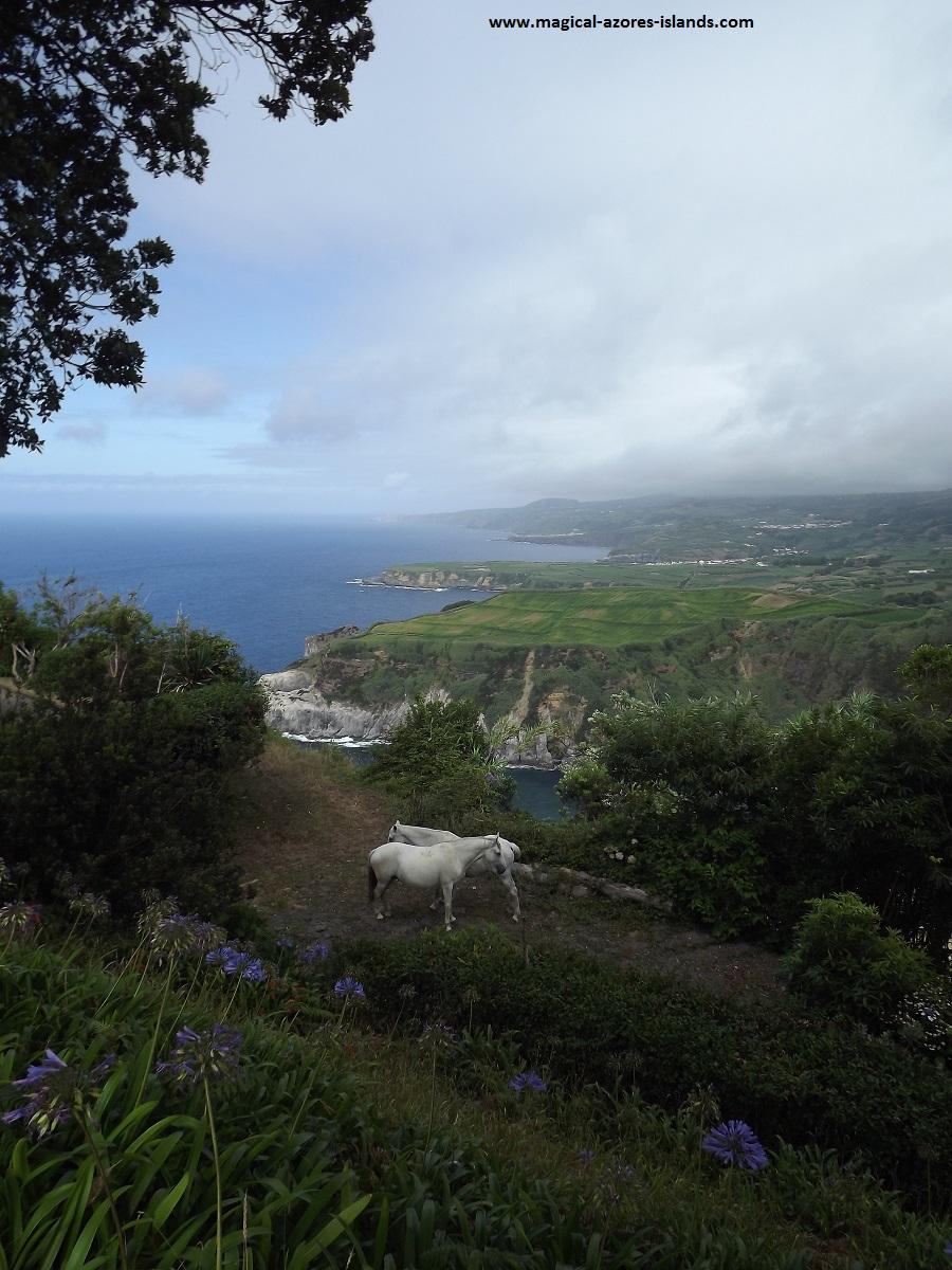 At Miradouro da Santa Iria in the Azores Islands (Sao Miguel)