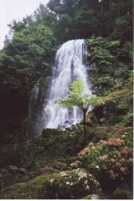 Waterfall in Sao Miguel